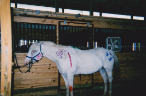 Summer camp, Paint the Pony activity